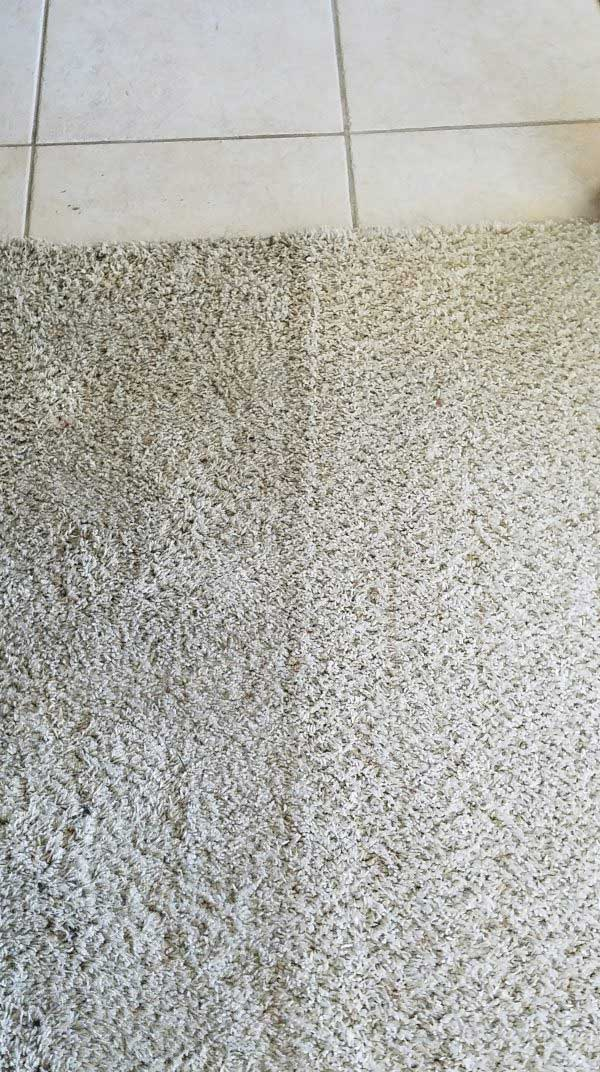 Carpet Cleaning Las Vegas 1 Best Greenway Tile Grout