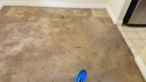 Before Carpet Cleaning Las Vegas