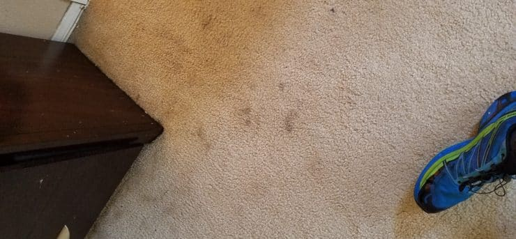 before carpet cleaning las vegas